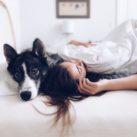 Is Co-sleeping With Your Dog a Good Idea?