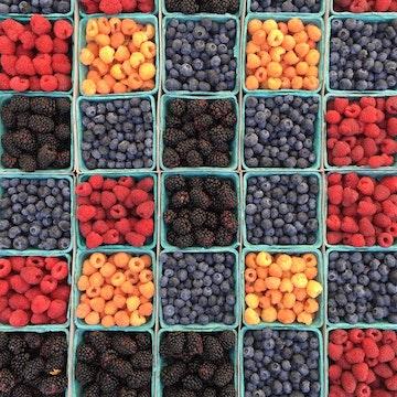 大自然的食用宝石:浆果